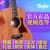 Taylor泰勒BT 1/2 E GS mini BBT 36寸単板民謡旅行電箱木ギター
