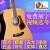 サンマルコ楽器(ST.MARK'S)サンマルコギターCL 126/160/170/180シングルアコースティック民謡木ギターCL 160紅松41寸原木色