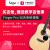 サガサガサガ単板アコスキーティップ面シングルギター入門初心者楽器スギ原色SF 800 41寸角